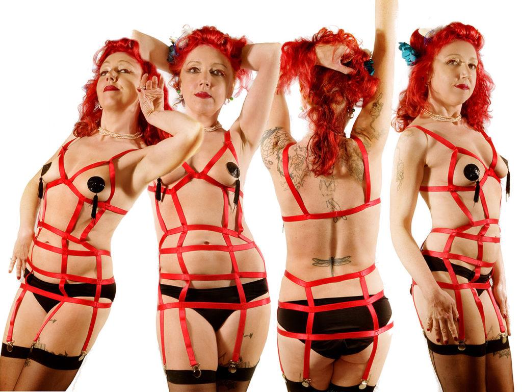 Harness-Suspenders